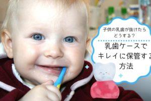 乳歯ケースTOP