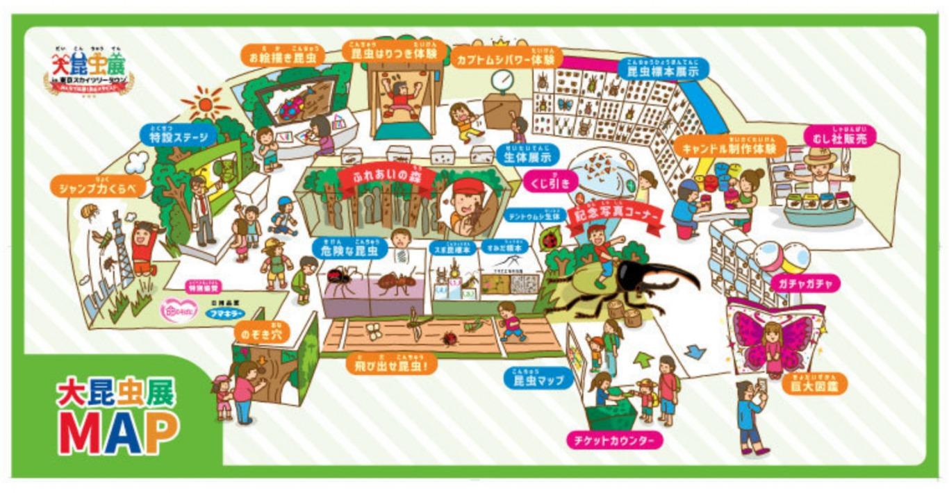 昆虫展地図